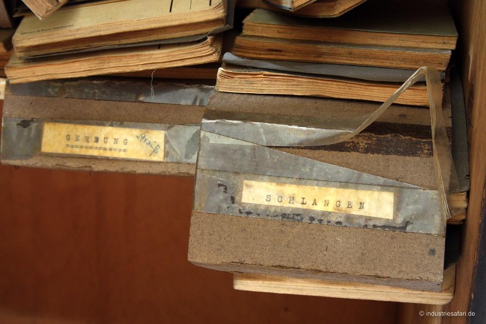 Die Reptillederfabrik -revisit- [2009]