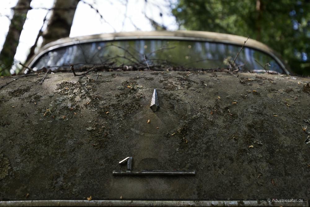129_17_Autofriedhof_B